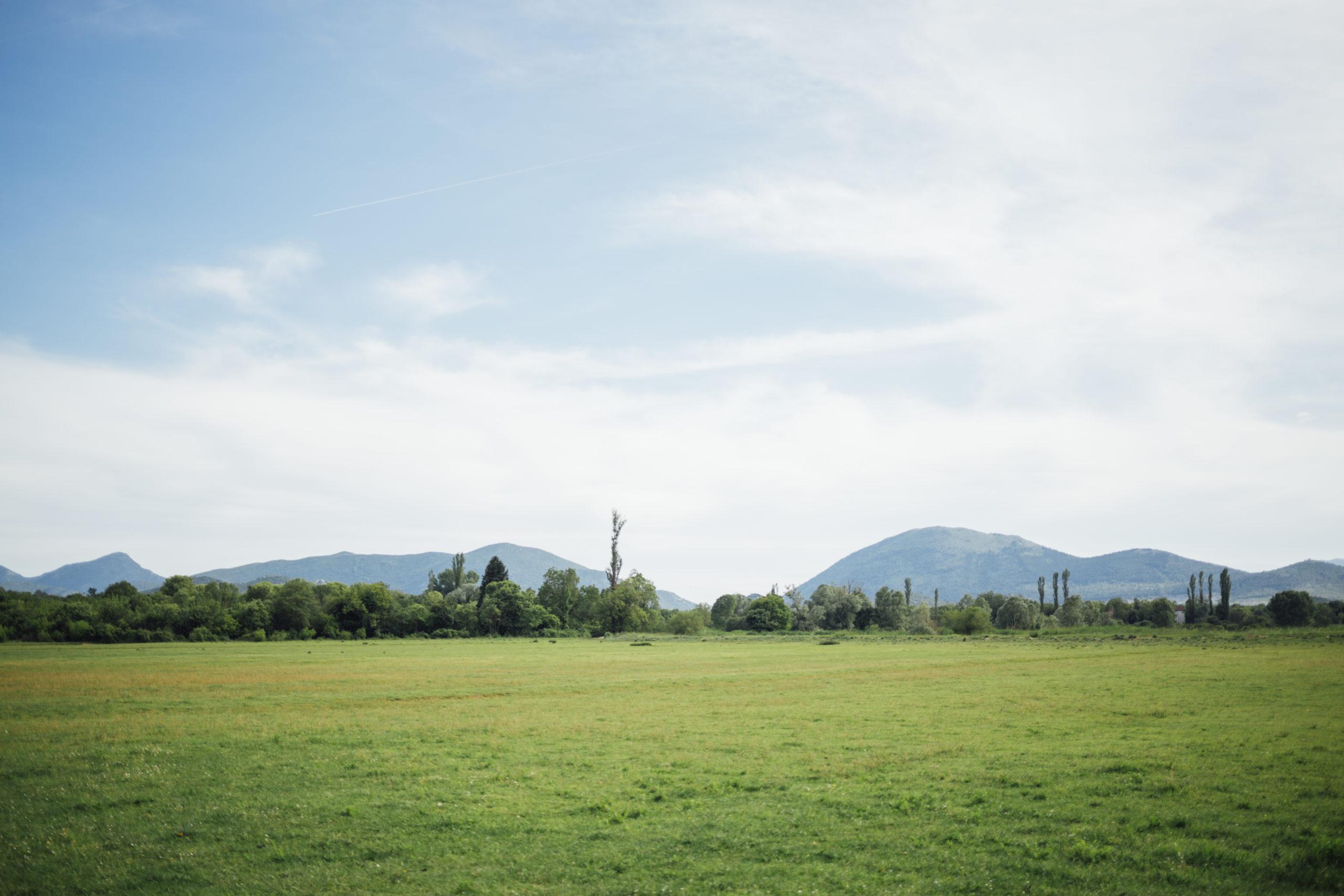 Terreno agricolo in vendita a Ziano Piacentino